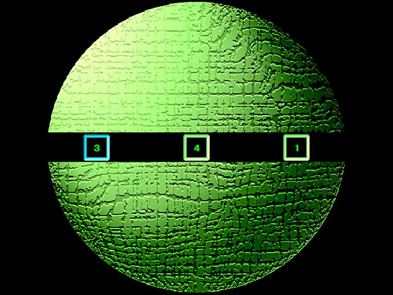 動体視力測定(DVA)
